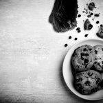 Cookies? Oder eher das Krümelmonster?